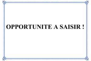 OPPORTUNITE A SAISIR_001